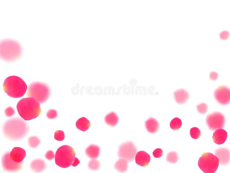 Fondo rosado de la tarjeta del día de San Valentín del vector de los pétalos que cae color de rosa ilustración del vector