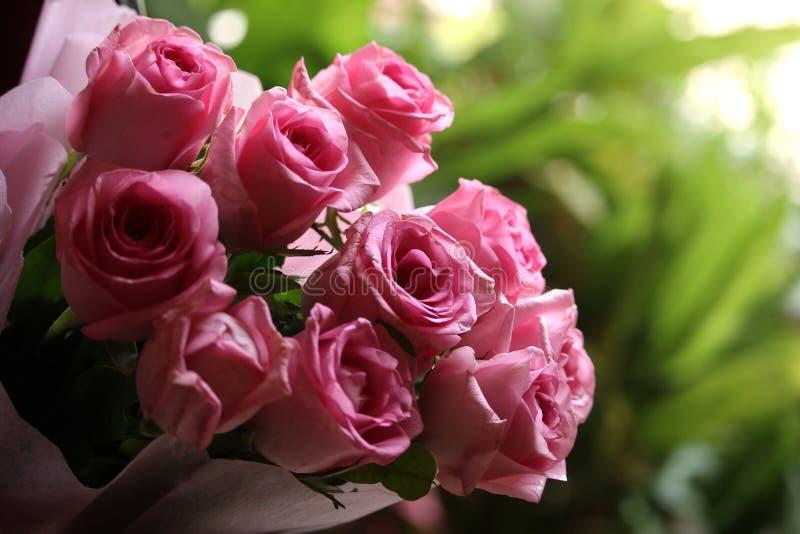 Fondo rosado del interior de las rosas del ramo fotos de archivo libres de regalías