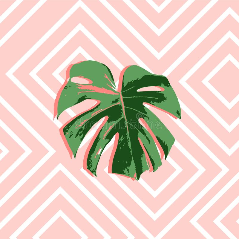 Fondo rosado del verano tropical con la palma de las hojas ilustración del vector