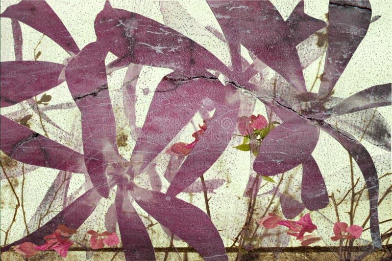 Fondo rosado y púrpura del extracto del bougainvillea foto de archivo libre de regalías