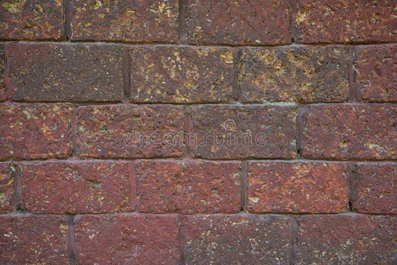 Muro di mattoni rosso della laterite fotografia stock libera da diritti