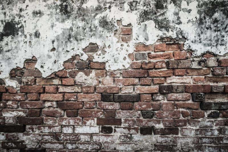 Fondo rotto storico Grungy del muro di mattoni di estate soleggiata d immagini stock