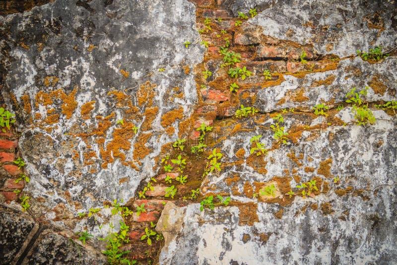 Fondo rotto storico Grungy del muro di mattoni di estate soleggiata d fotografia stock libera da diritti