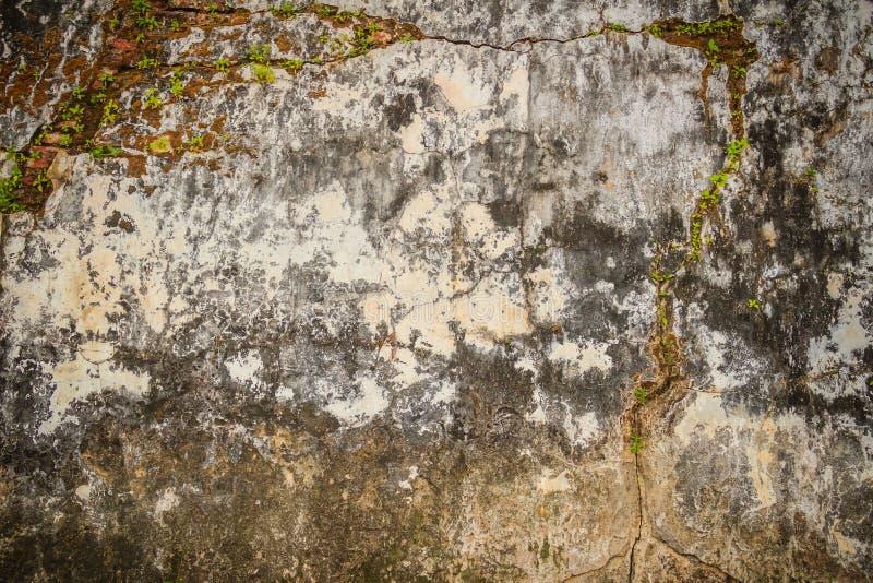 Fondo rotto storico Grungy del muro di mattoni di estate soleggiata d fotografie stock