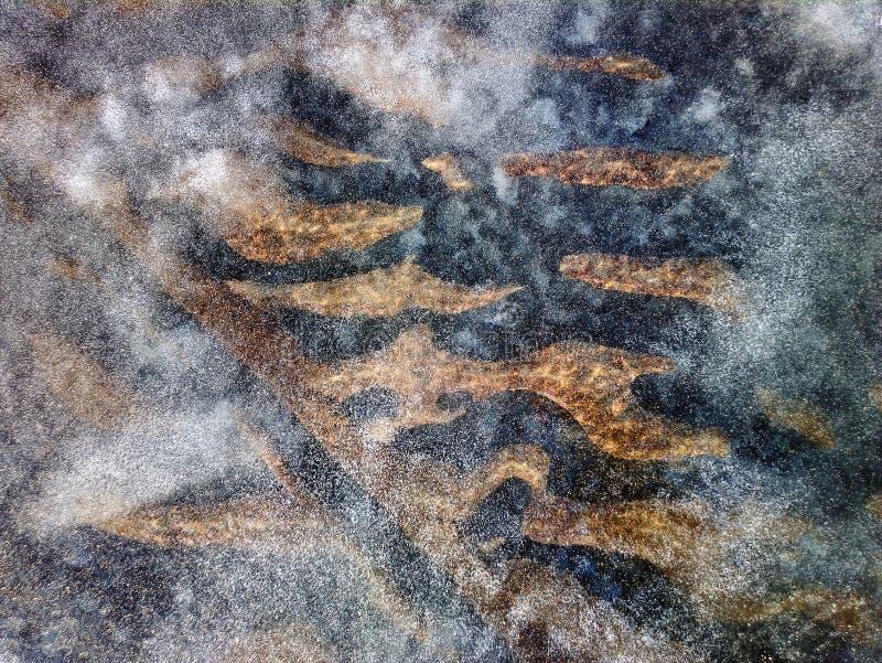 fondo sabbioso di acqua bassa da sparare attraverso giovane ghiaccio immagine stock