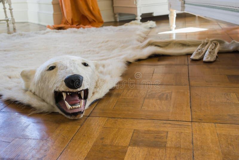 Fondo salvaje del espacio de la copia de la caza de Drachenfels del castillo de la alfombra del oso de hielo de la decadencia int foto de archivo