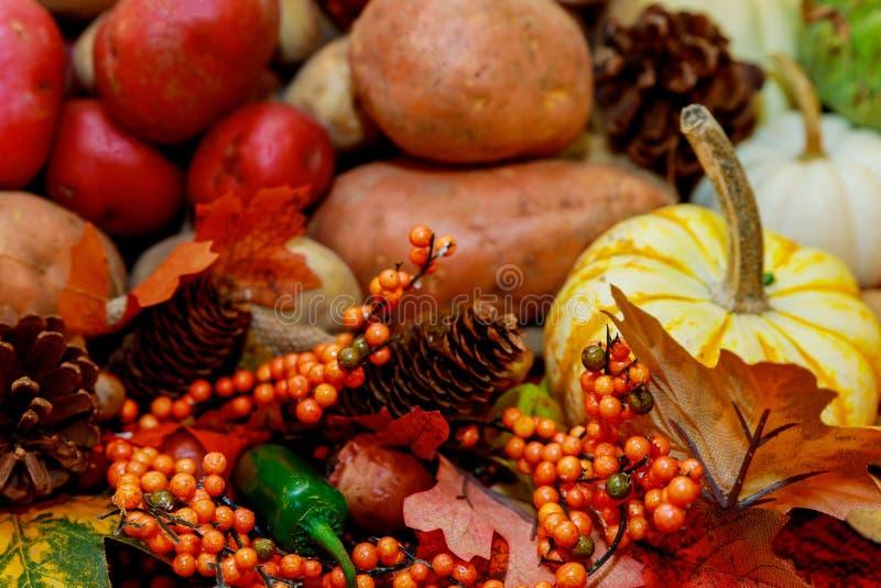 Fondo sano dell'alimento con le verdure autunnali e la frutta Ortaggi da frutto e foglie di autunno Concetto di giorno di ringraz fotografie stock