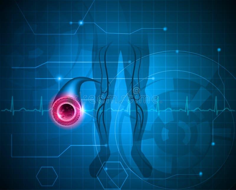 Fondo sano dell'arteria della gamba illustrazione vettoriale