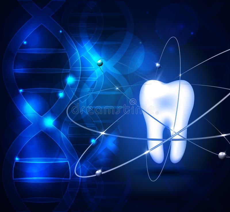 Fondo scientifico del dente bianco sano illustrazione di stock