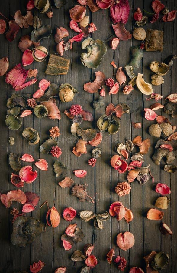 Fondo secado de las flores imagen de archivo libre de regalías