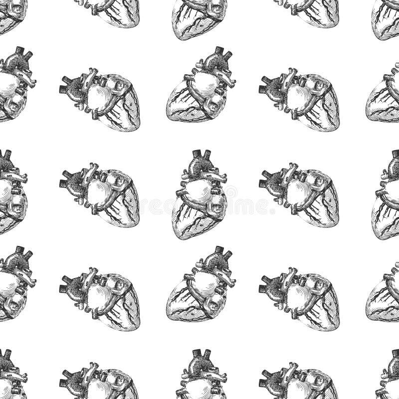 Fondo senza cuciture del modello di schizzo umano del cuore Vettore royalty illustrazione gratis