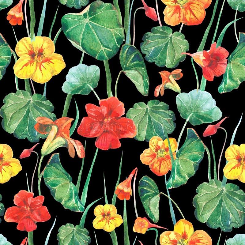 Fondo senza cuciture del tessuto dell'acquerello dei fiori e delle foglie del nasturzio Fondo nero di vecchio stile immagini stock libere da diritti