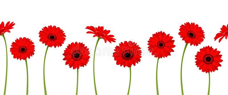 Fondo senza cuciture orizzontale con i fiori rossi della gerbera Illustrazione di vettore royalty illustrazione gratis