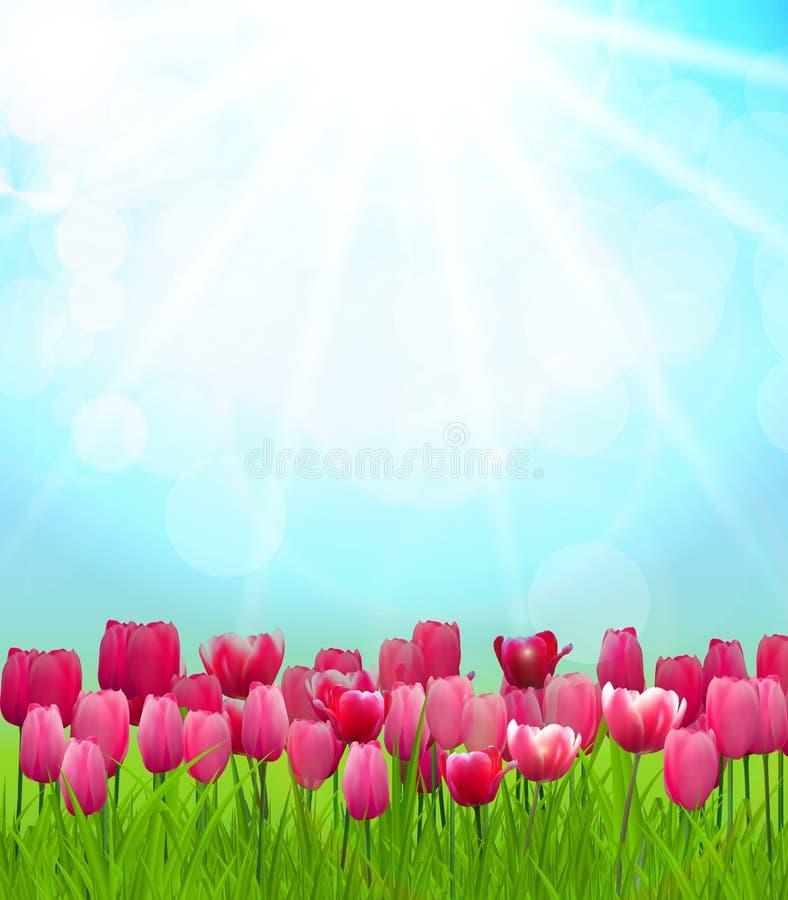 Fondo soleado natural stock de ilustración
