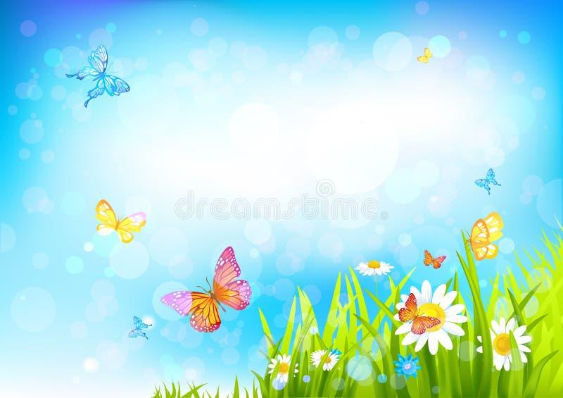 Fondo soleggiato di estate royalty illustrazione gratis