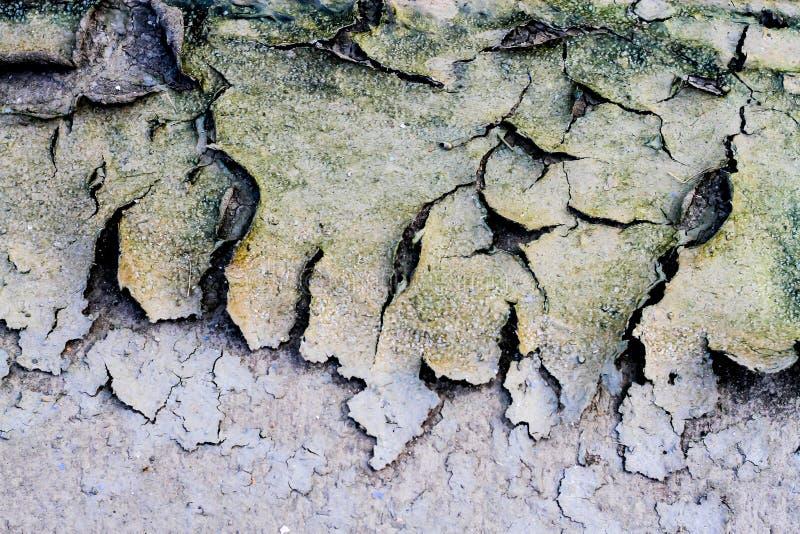 Fondo sporco al suolo dell'estratto della terra della struttura della sporcizia delle crepe fotografie stock