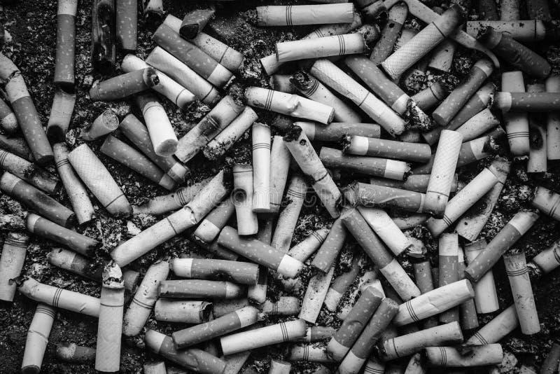 Fondo sporco in bianco e nero di molte estremità di sigarette immagine stock libera da diritti