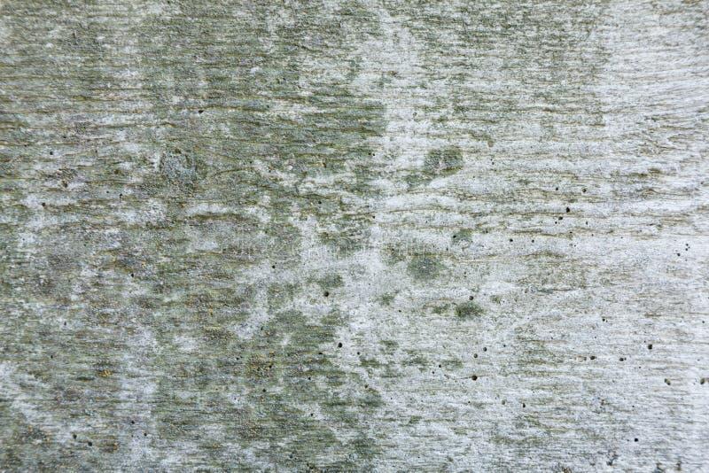 Fondo strutturato astratto grigio della parete di lerciume per uso nella progettazione Frammento della parete con le crepe, graff immagini stock libere da diritti