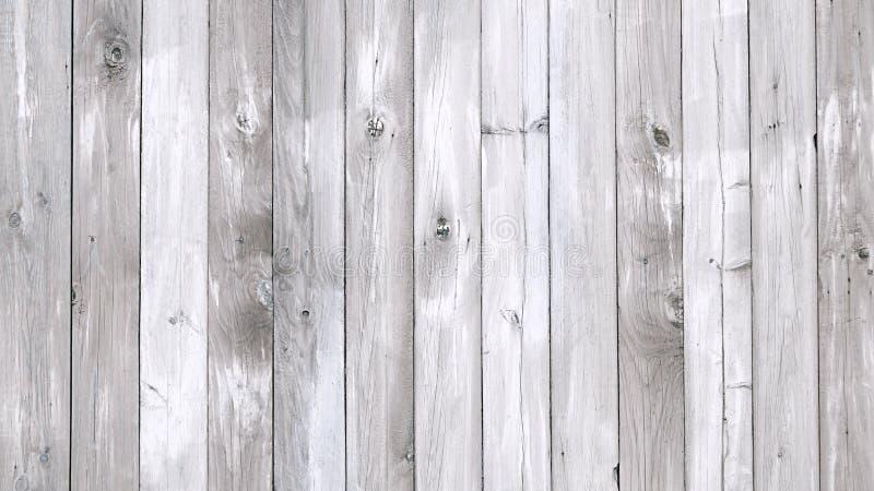 Fondo strutturato del modello di legno grigio del grano fotografia stock