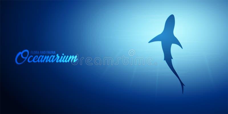 Fondo subacqueo con i raggi del sole e la siluetta dello squalo Insegna dell'oceano profondo Illustrazione di vettore di colore royalty illustrazione gratis