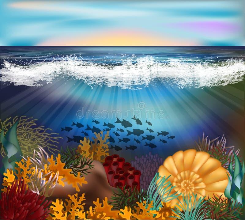 Fondo subacqueo tropicale con la conchiglia illustrazione vettoriale
