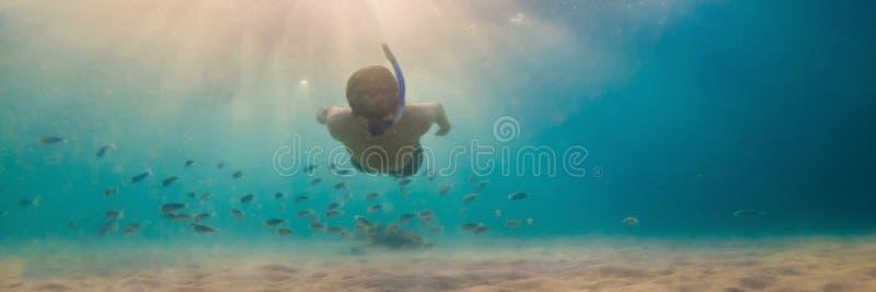 Fondo subacu?tico de exploraci?n del paisaje del arrecife de coral de los hombres que bucea jovenes en el oc?ano azul profundo co fotografía de archivo libre de regalías