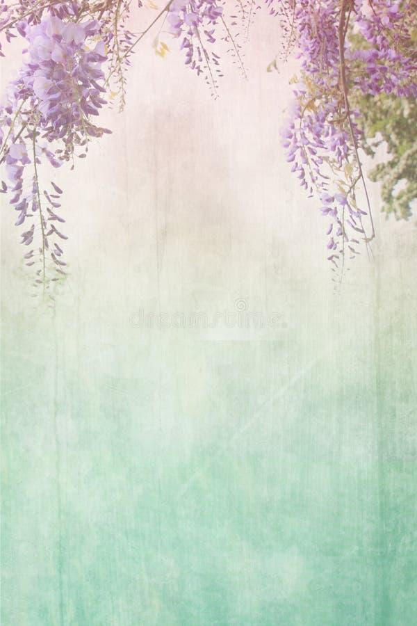 Fondo sucio con la frontera floral fotos de archivo libres de regalías