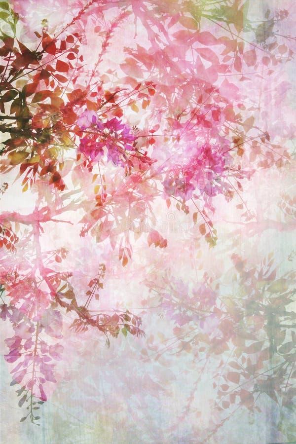 Fondo sucio con la frontera floral imagenes de archivo