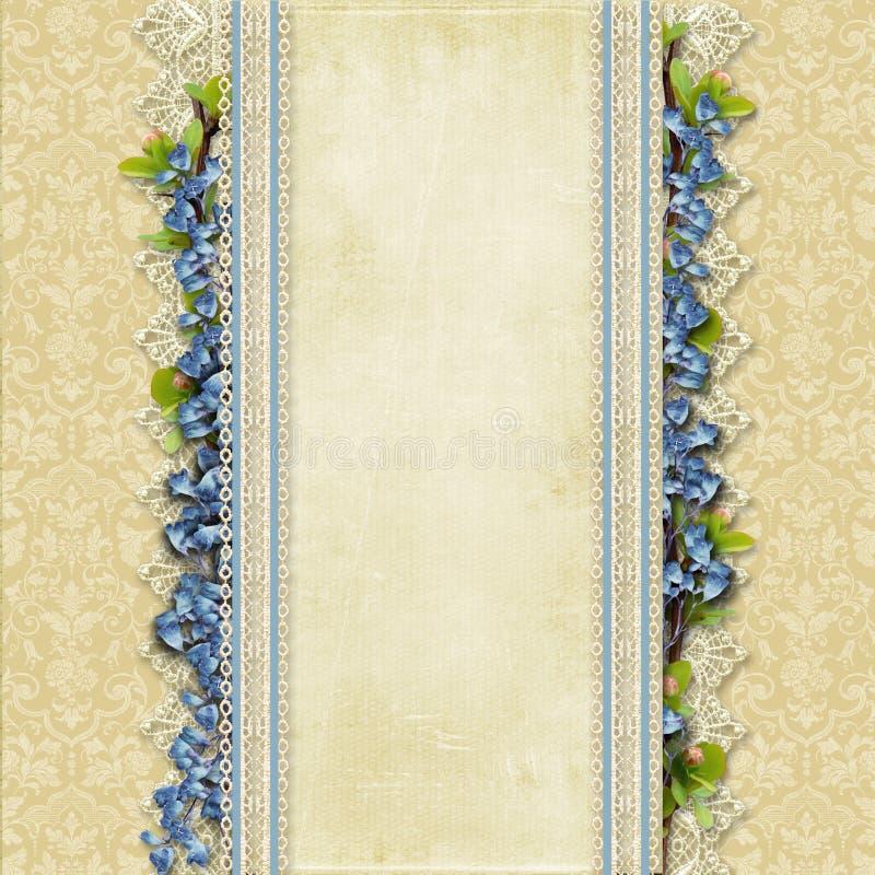 Fondo superbo d'annata con pizzo ed i fiori blu illustrazione di stock