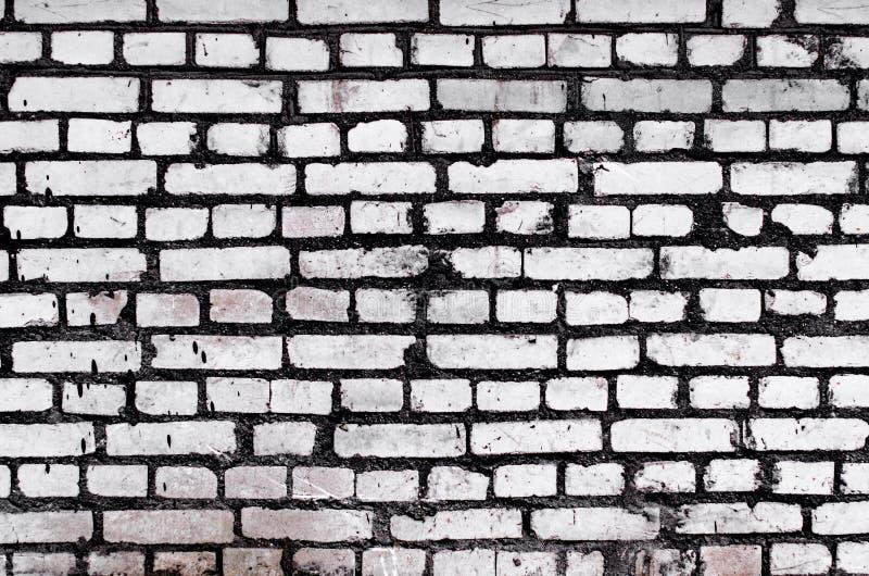 Fondo texturizado pared de ladrillo blanca vieja Textura blanqueada cuadrado de Brickwall del vintage Superficie lavada blanco de foto de archivo