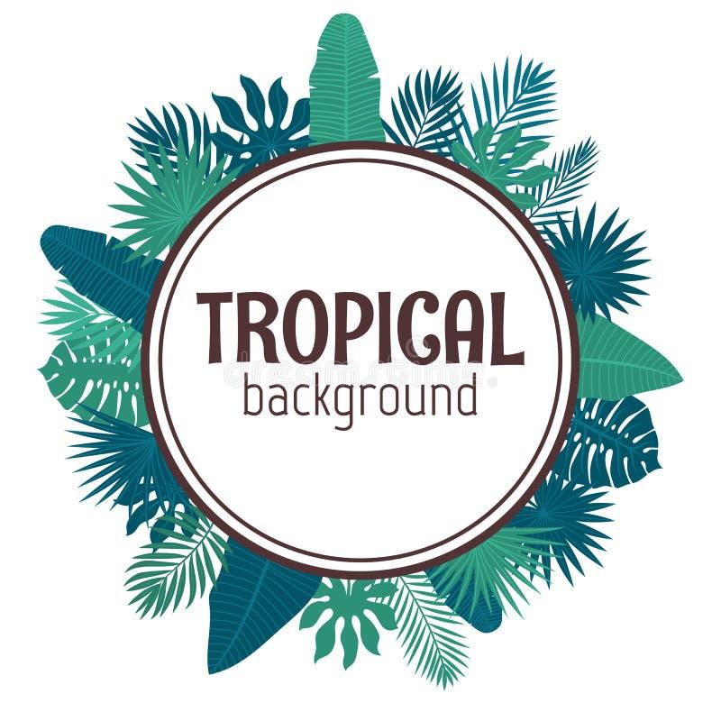 Fondo Tropical De Las Hojas Diseño Del Verano Marco Del Círculo ...