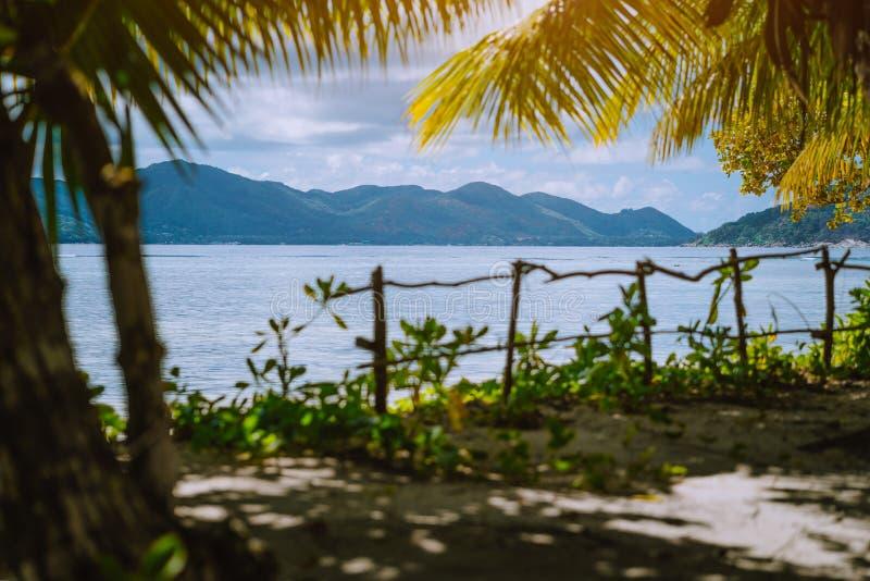 Fondo tropical exótico de la naturaleza del paraíso enmarcado con la cerca del palmera y de bambú en luz caliente de la puesta de foto de archivo