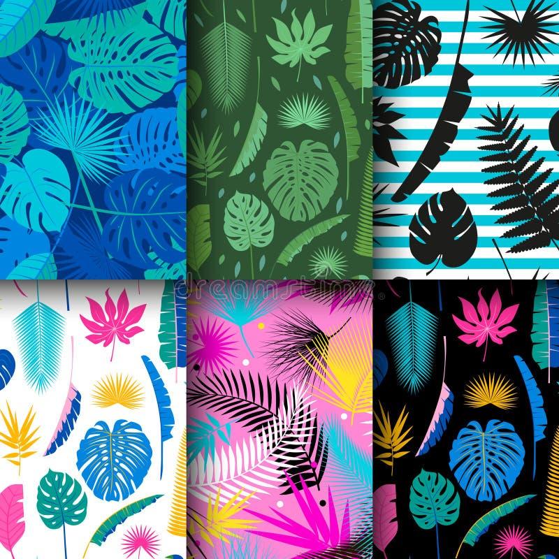 Fondo tropical inconsútil hermoso de 6 estampados de flores de la selva con diversas hojas de palma conjunto libre illustration