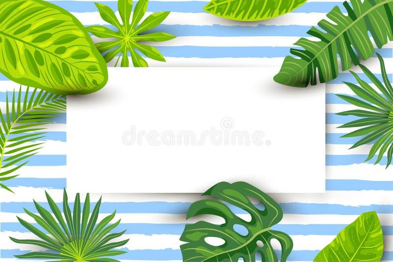 Fondo tropicale con le foglie esotiche, strato di carta di estate verde illustrazione vettoriale