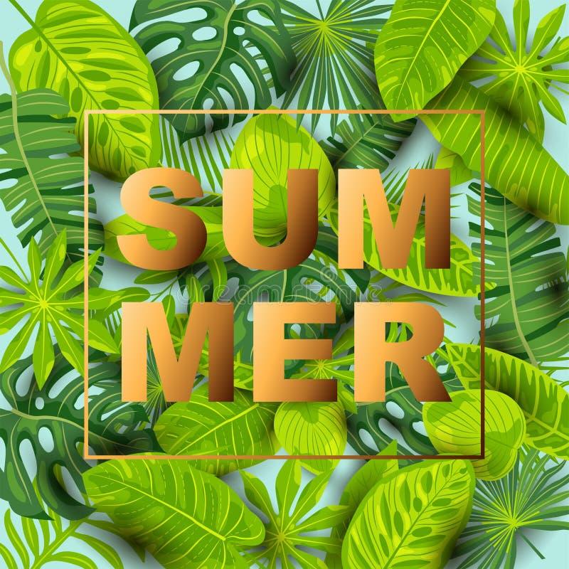 Fondo tropicale di estate verde con le foglie esotiche illustrazione vettoriale