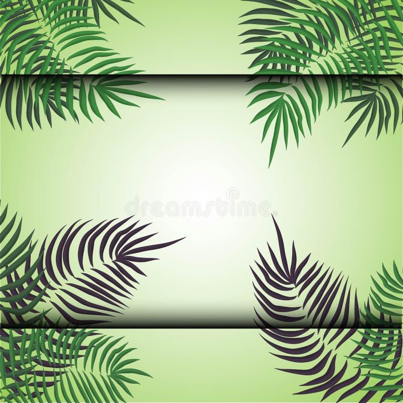 Fondo tropicale di estate verde con le foglie di palma e le piante esotiche Priorit? bassa floreale di vettore illustrazione vettoriale