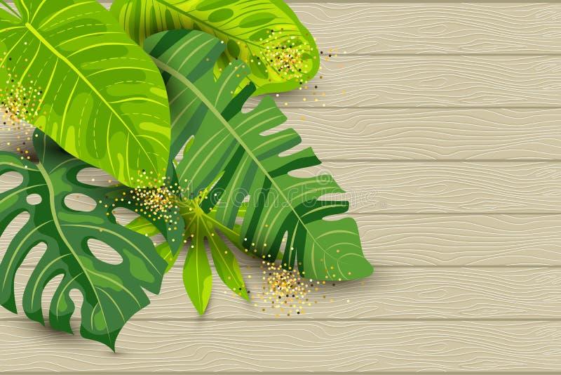 Fondo tropicale di estate verde, foglie esotiche su fondo di legno strutturato illustrazione di stock