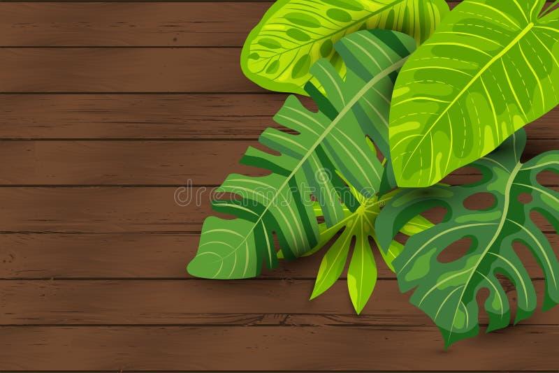 Fondo tropicale di estate verde, foglie esotiche su legno strutturato illustrazione vettoriale