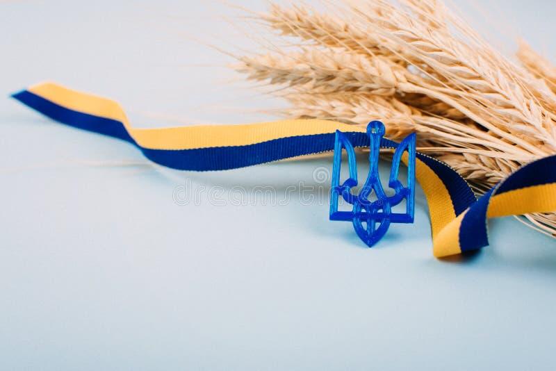 Fondo ucraino con il nastro giallo e blu di simboli nazionali, del tridente della stemma, spighette dorate del grano sul blu 2019 fotografia stock libera da diritti