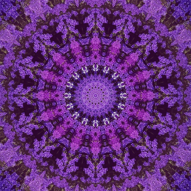 Fondo ultravioleta abstracto, flores tropicales de la buganvilla fotos de archivo