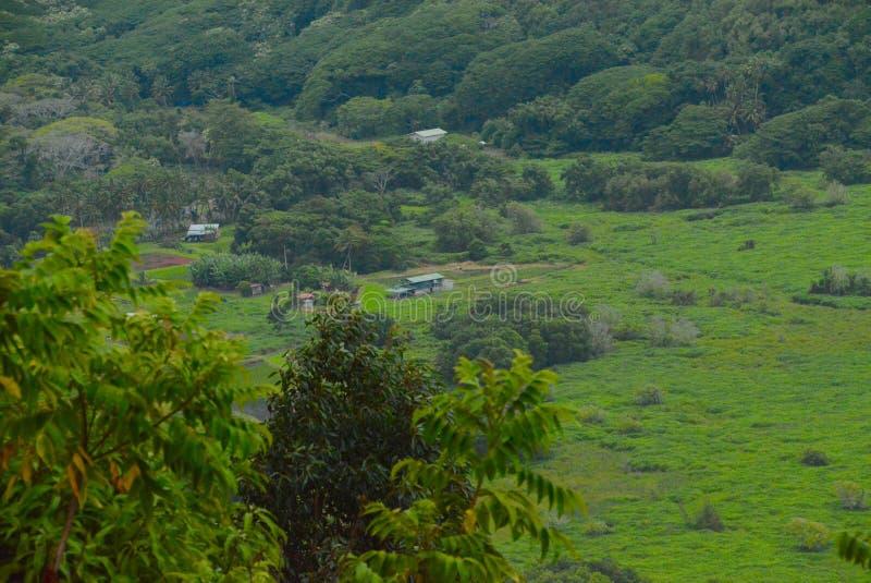 Fondo valle di Waipio immagini stock libere da diritti