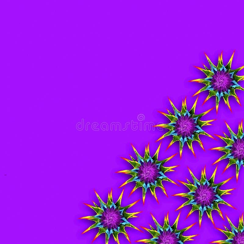 Fondo variopinto con i fiori coperti di spine dell'arcobaleno fotografie stock libere da diritti