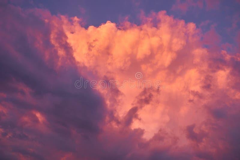 Fondo variopinto del cielo con le nuvole gonfie del rosa, porpora ed arancio dopo la tempesta di pioggia di estate fotografia stock