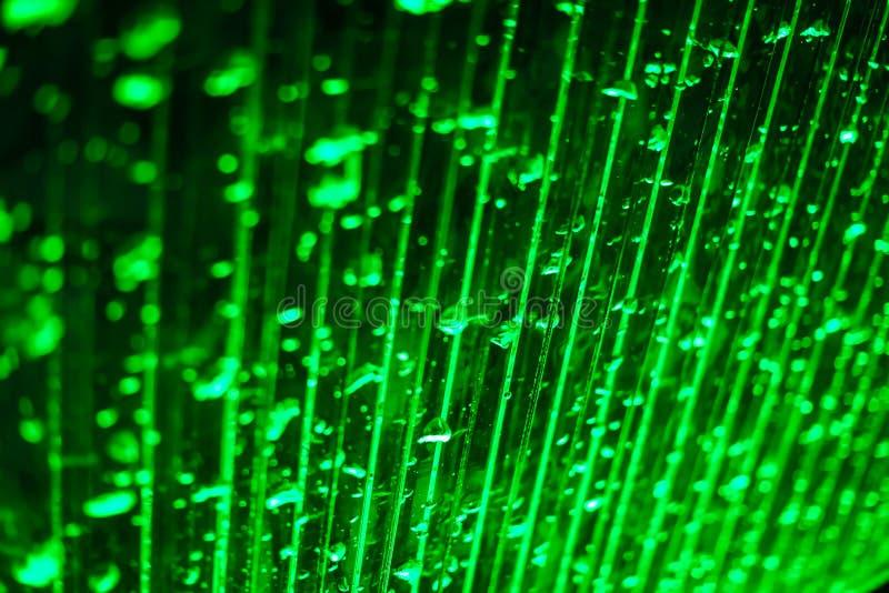 Fondo verde abstracto del bokeh en foco selectivo Bokeh burbujea textura abstracta Burbujas ligeras brillantes borrosas imagen de archivo libre de regalías