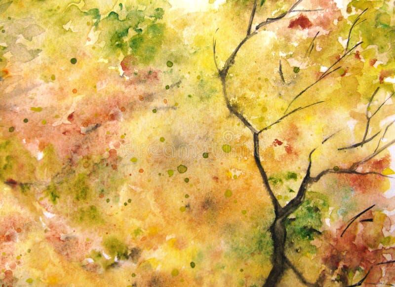 Fondo verde amarillo-naranja de la textura de la rama del follaje de la hoja del árbol del otoño de la acuarela imagenes de archivo