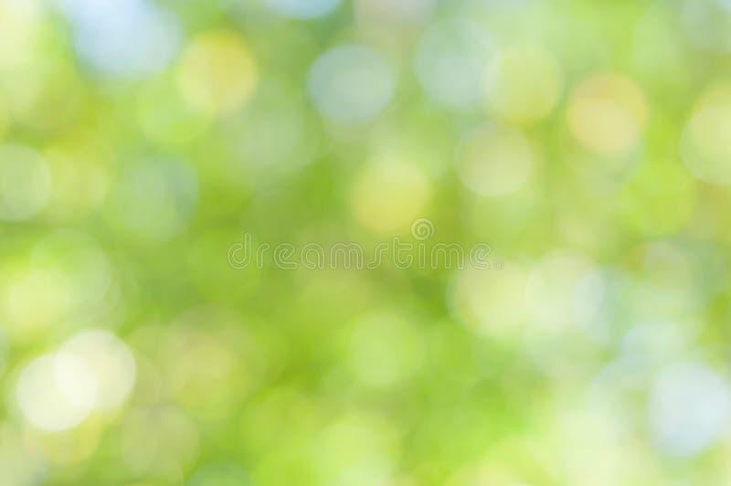 Fondo verde astratto Defocused fotografia stock libera da diritti