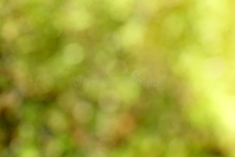 Fondo verde astratto della sfuocatura fotografia stock libera da diritti