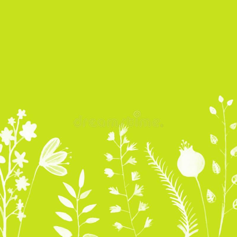Fondo verde claro con blanco pintado a mano libre illustration
