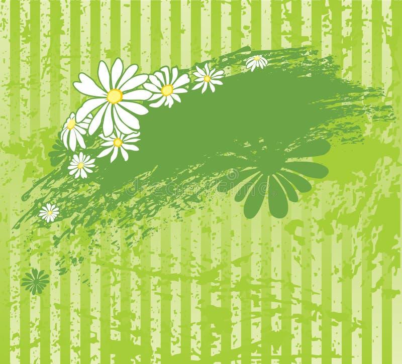 Fondo verde con la margarita stock de ilustración