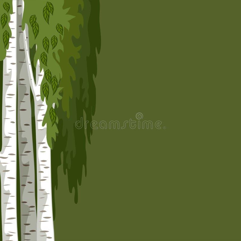Fondo verde con le betulle royalty illustrazione gratis